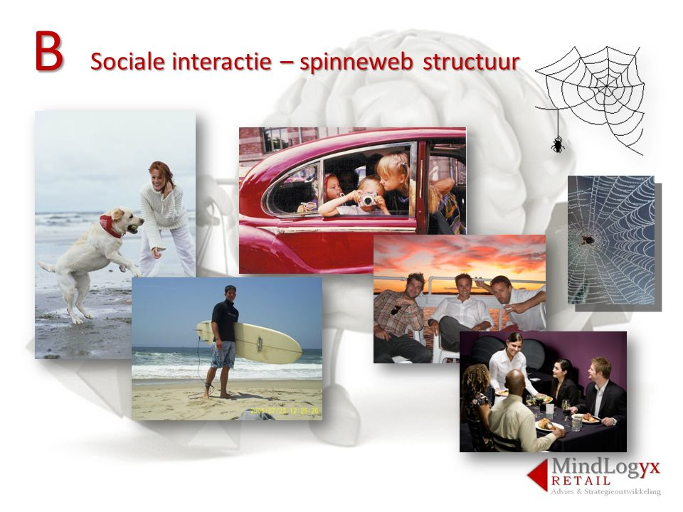 B Sociale interactie – spinneweb structuur