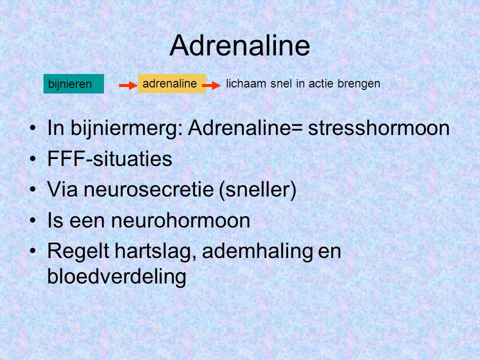 Adrenaline In bijniermerg: Adrenaline= stresshormoon FFF-situaties