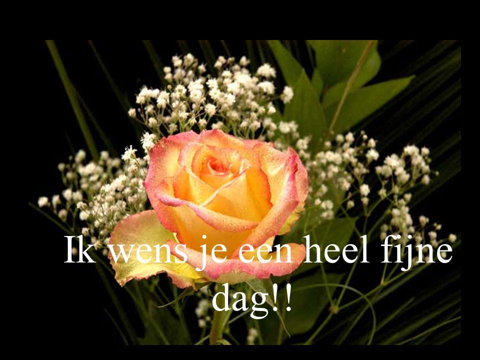 Ik wens je een heel fijne dag!!