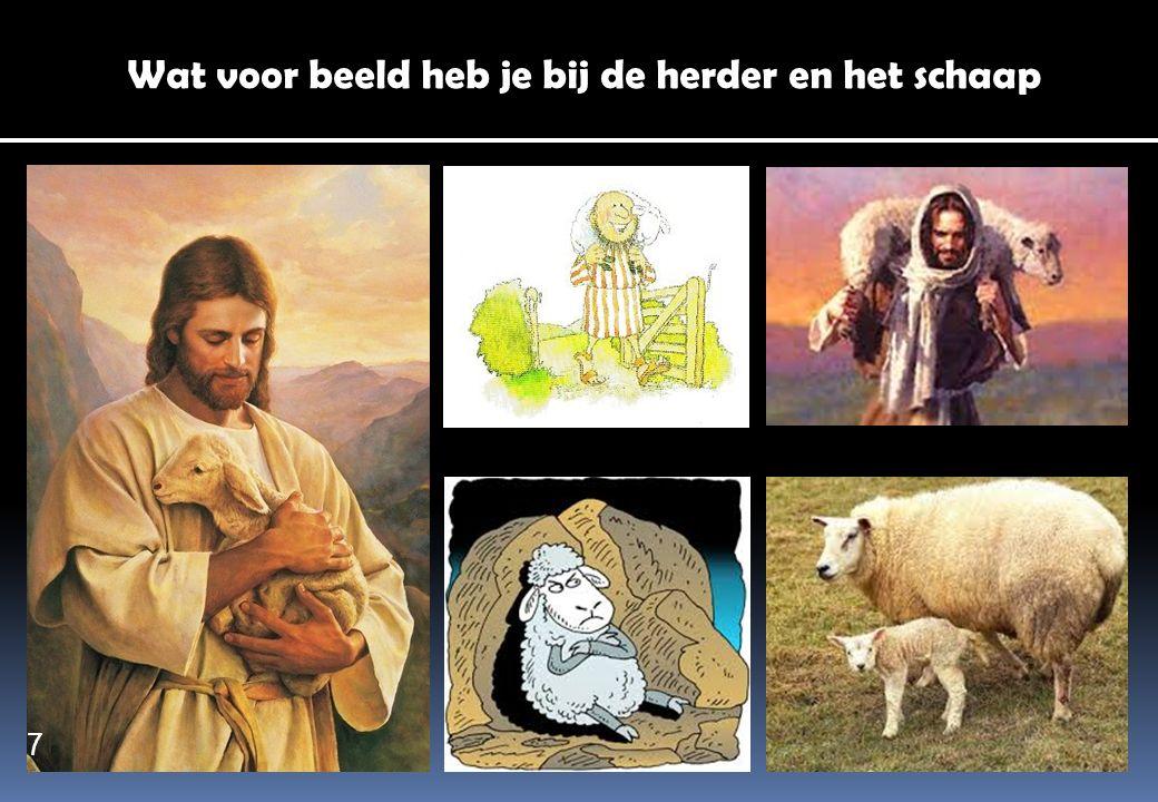 Wat voor beeld heb je bij de herder en het schaap
