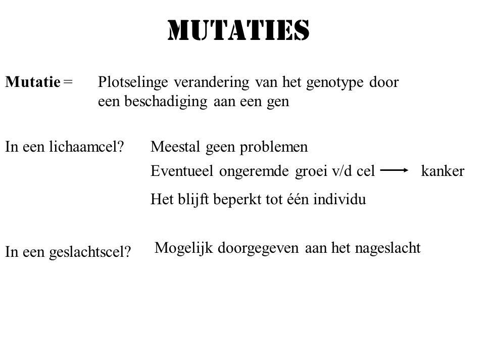 mutaties Mutatie = Plotselinge verandering van het genotype door een beschadiging aan een gen. In een lichaamcel
