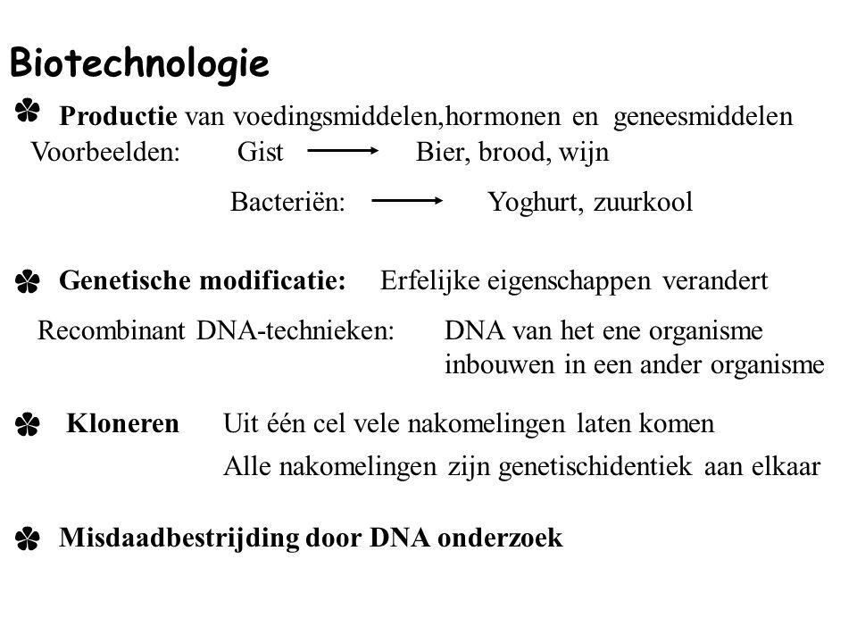 Biotechnologie * Productie van voedingsmiddelen,hormonen en geneesmiddelen. Voorbeelden: Gist. Bier, brood, wijn.