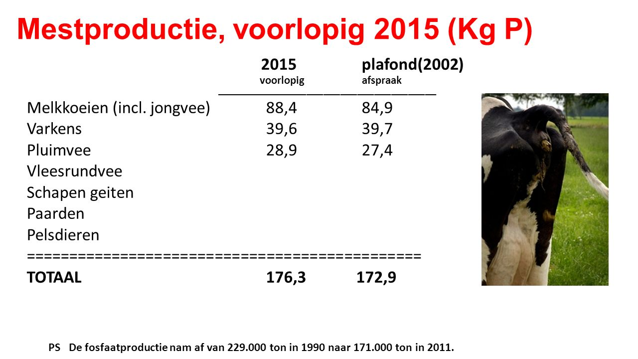 Mestproductie, voorlopig 2015 (Kg P)