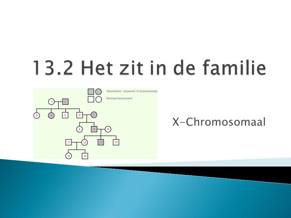 13.2 Het zit in de familie X-Chromosomaal