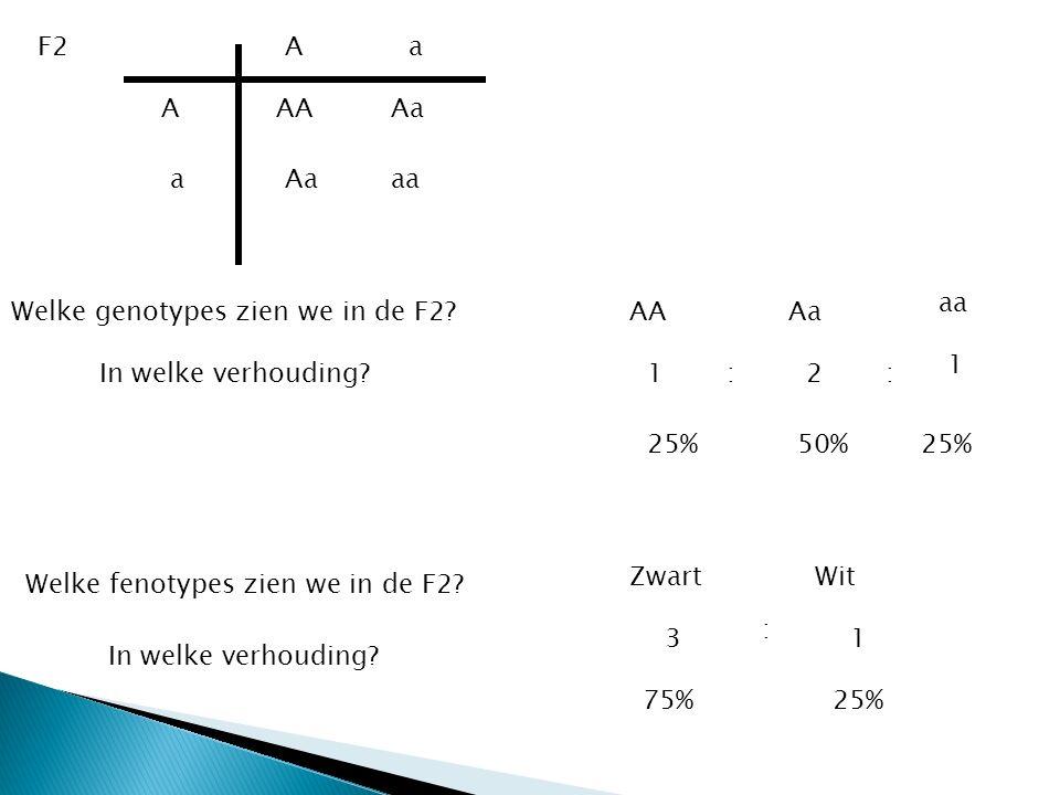 F2 A. a. A. AA. Aa. a. Aa. aa. aa. Welke genotypes zien we in de F2 AA. Aa. 1. In welke verhouding