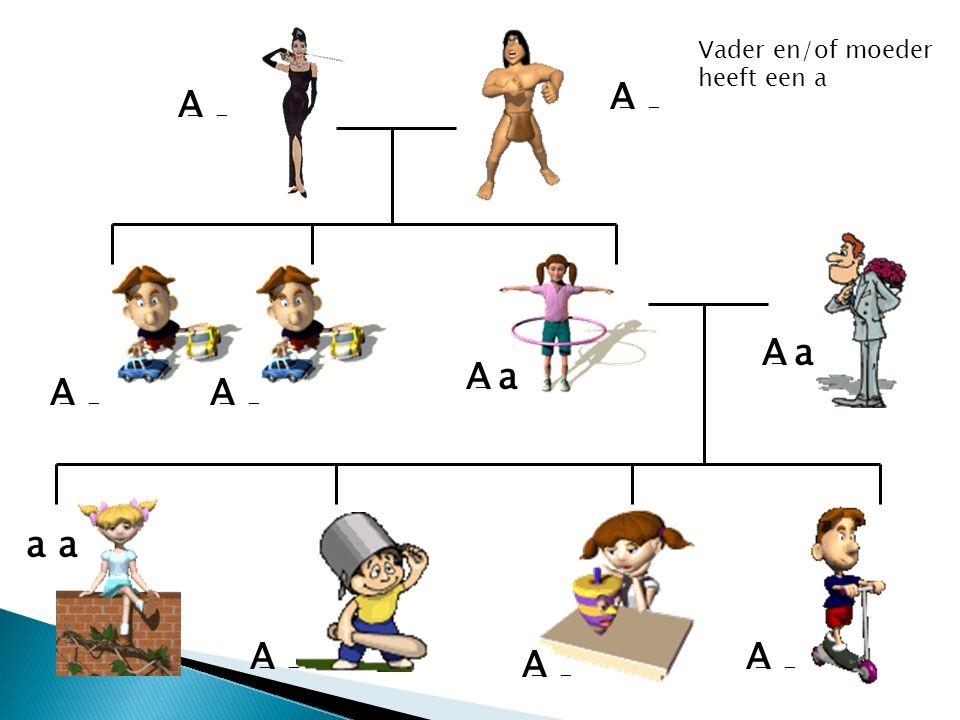 A A A a A a A A a a A A A Vader en/of moeder heeft een a - - - - - -