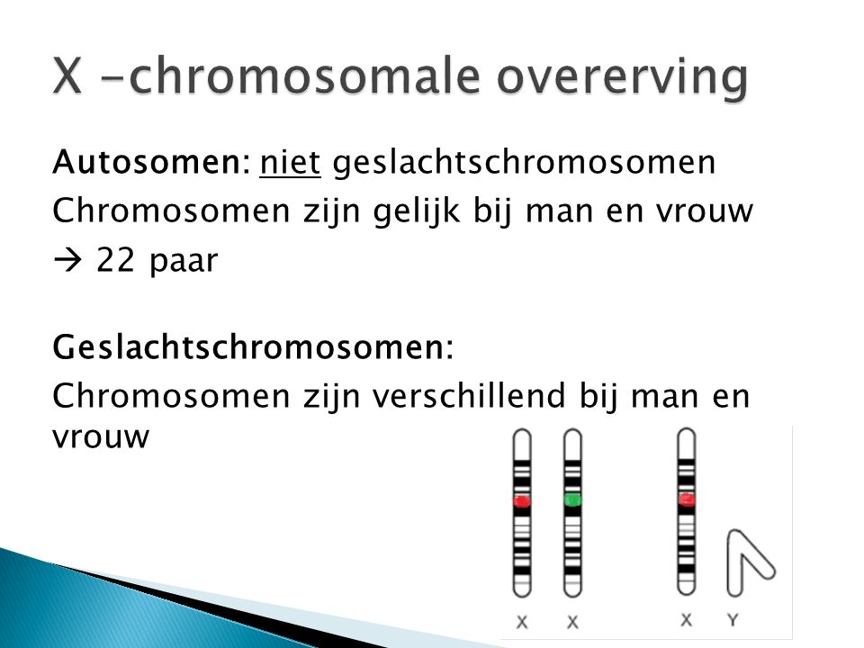 X -chromosomale overerving