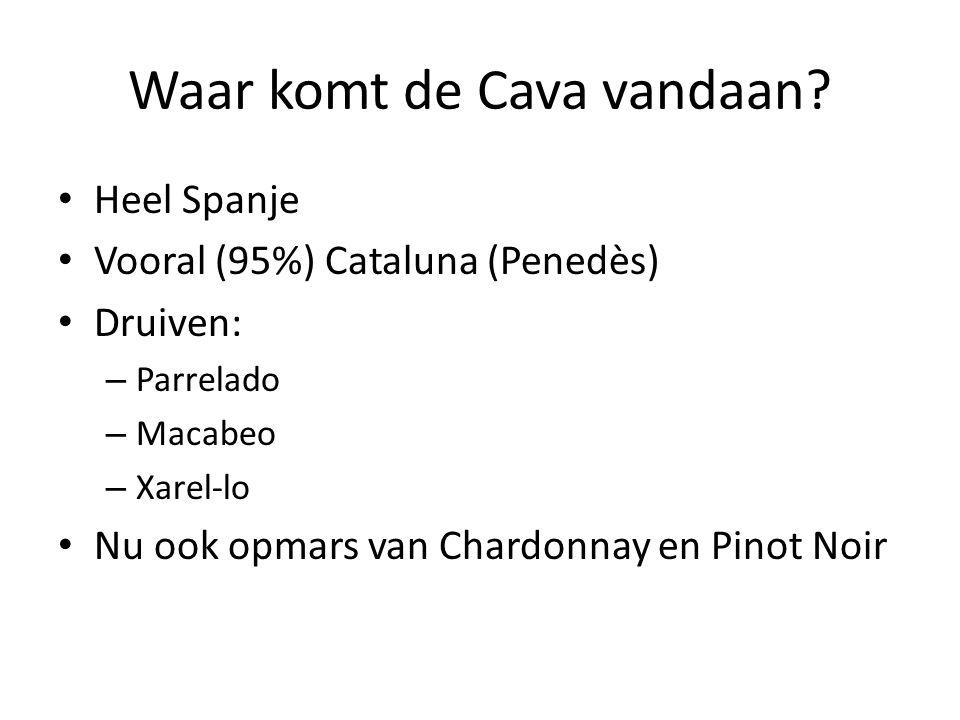 Waar komt de Cava vandaan