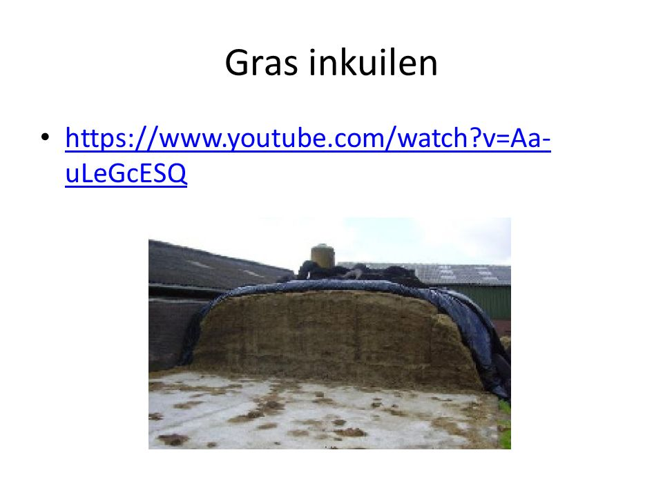 Gras inkuilen https://www.youtube.com/watch v=Aa-uLeGcESQ