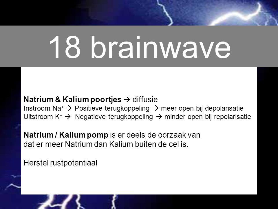 18 brainwave Natrium & Kalium poortjes  diffusie