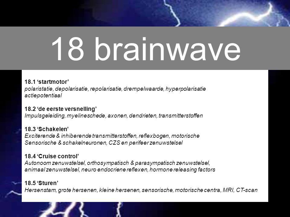 18 brainwave 18.1 'startmotor'