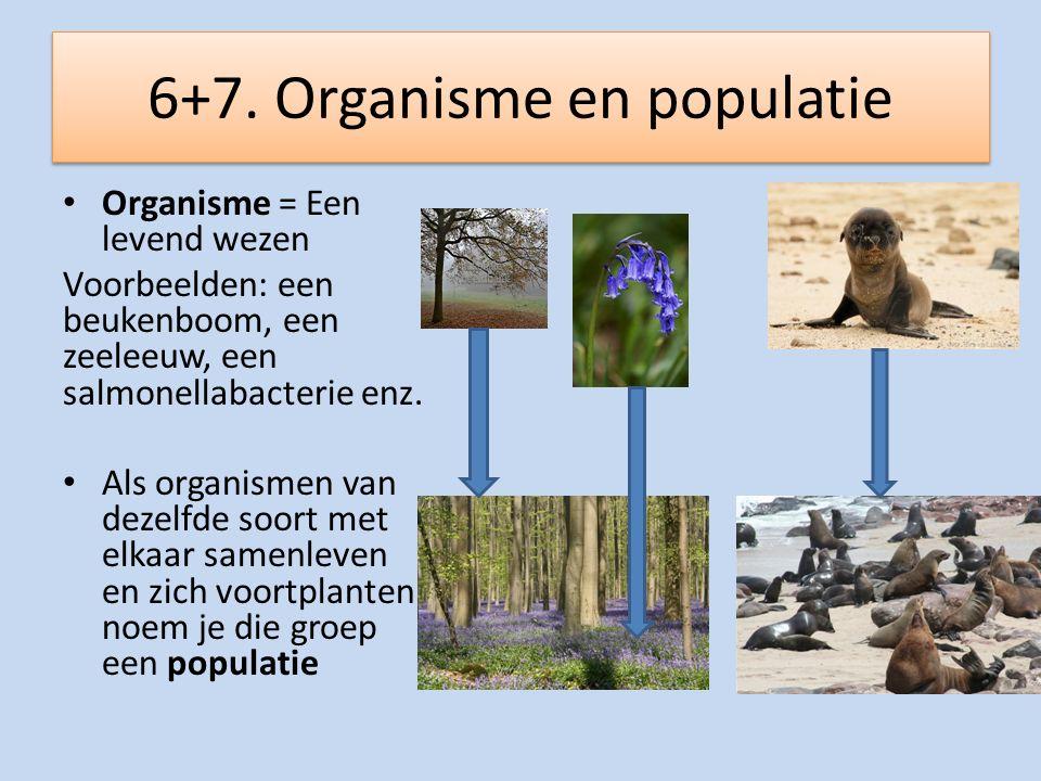 6+7. Organisme en populatie
