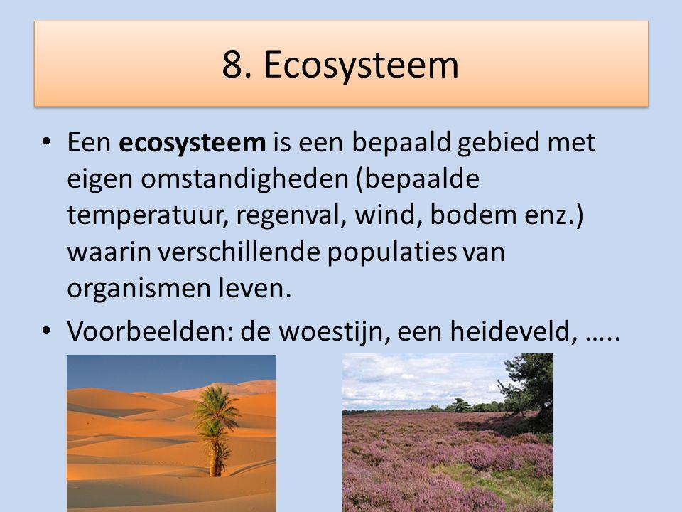 8. Ecosysteem