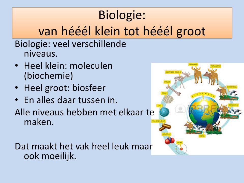 Biologie: van hééél klein tot hééél groot
