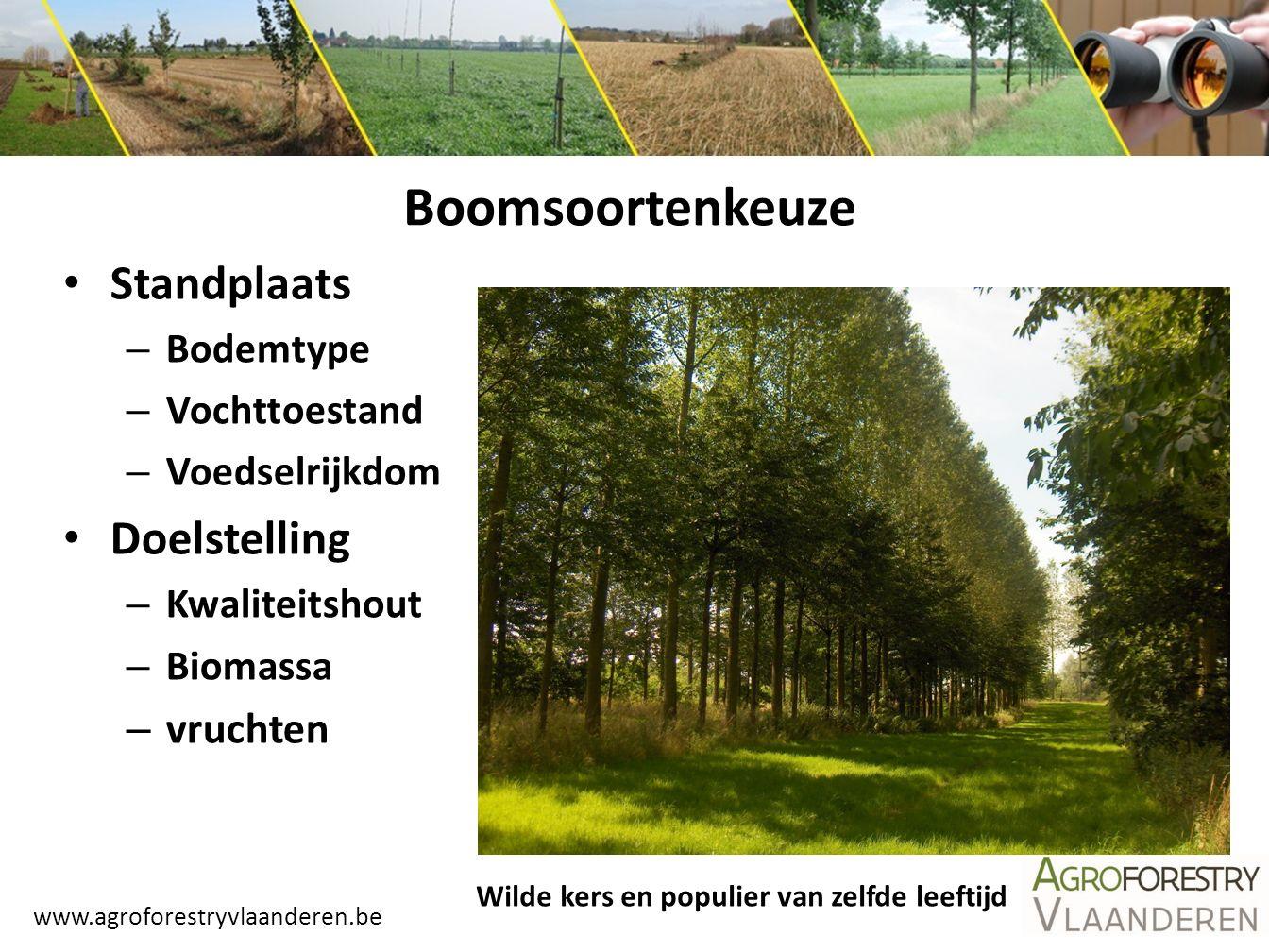 Boomsoortenkeuze Standplaats Doelstelling vruchten Bodemtype