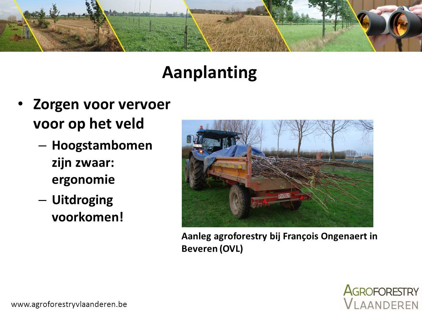 Aanplanting Zorgen voor vervoer voor op het veld