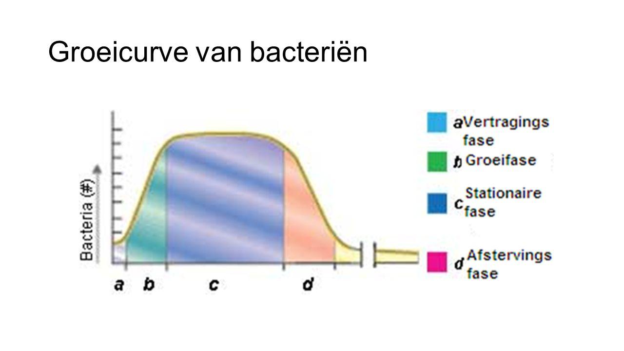 Groeicurve van bacteriën