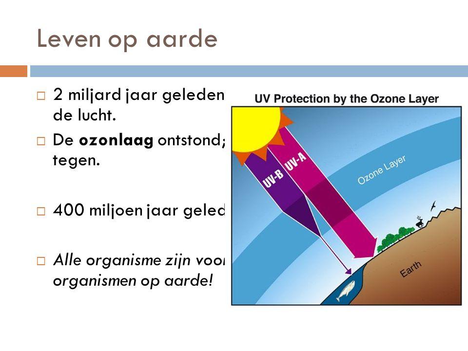 Leven op aarde 2 miljard jaar geleden steeg de hoeveelheid O2 in de lucht. De ozonlaag ontstond; houdt schadelijk uv-straling tegen.