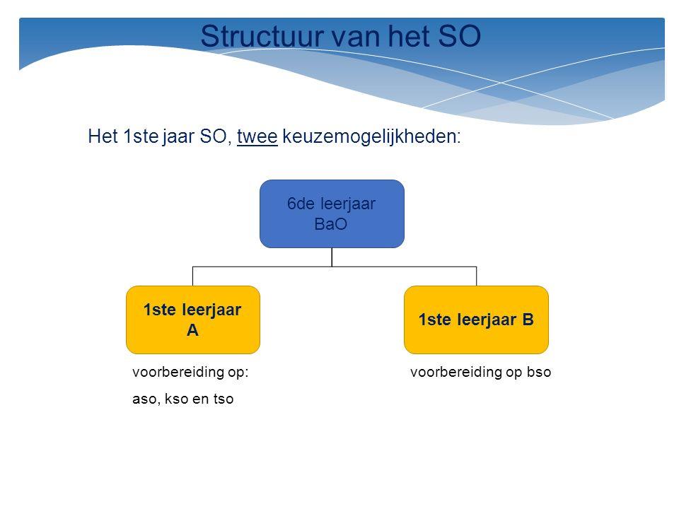 Structuur van het SO Het 1ste jaar SO, twee keuzemogelijkheden: