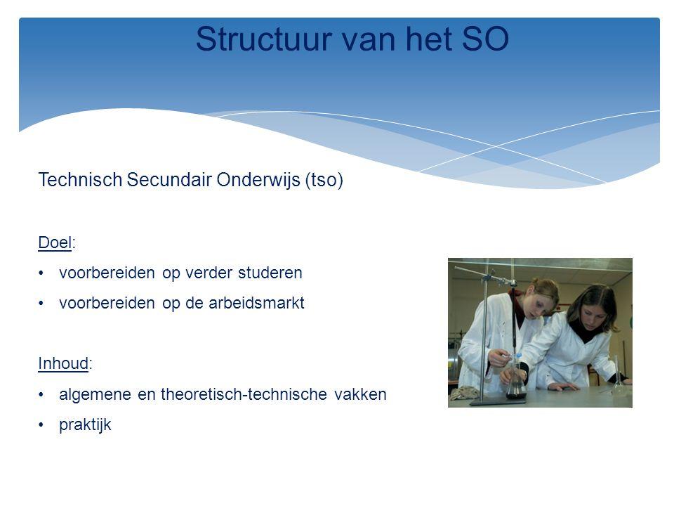 Structuur van het SO Technisch Secundair Onderwijs (tso) Doel: