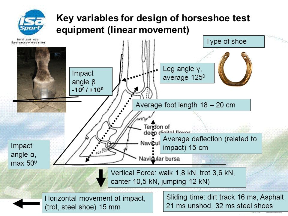 Key variables for design of horseshoe test equipment (linear movement)
