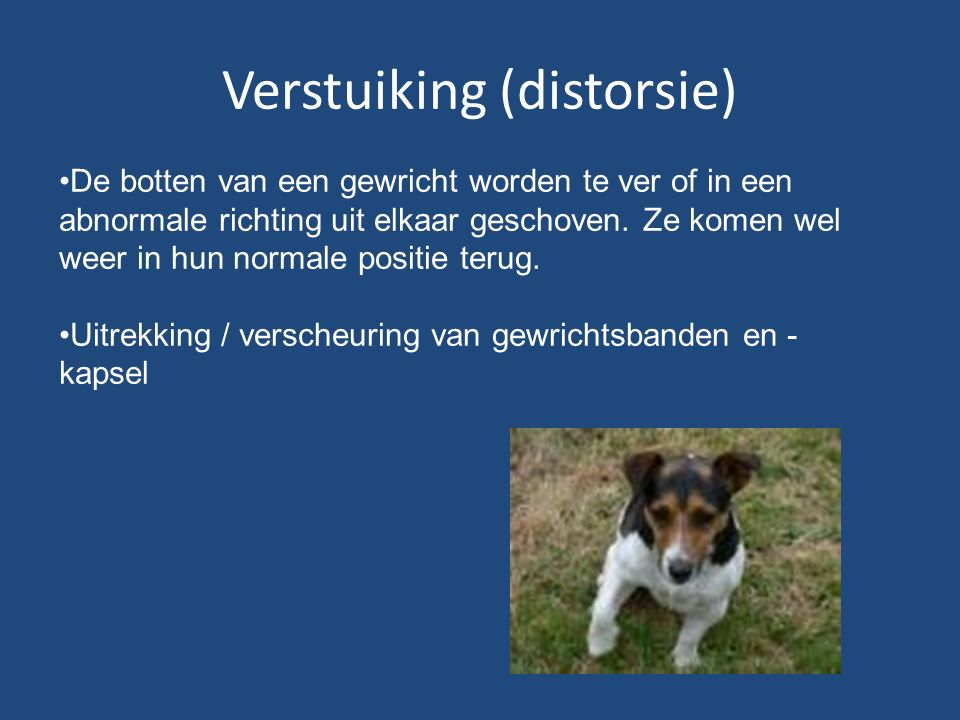 Verstuiking (distorsie)