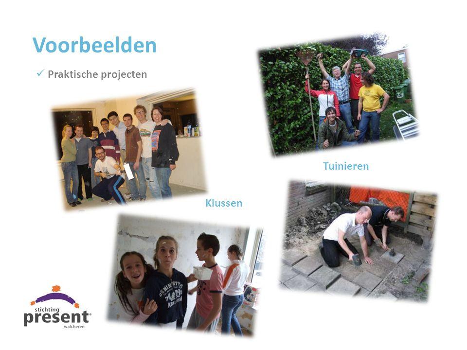 Voorbeelden Praktische projecten Tuinieren Klussen