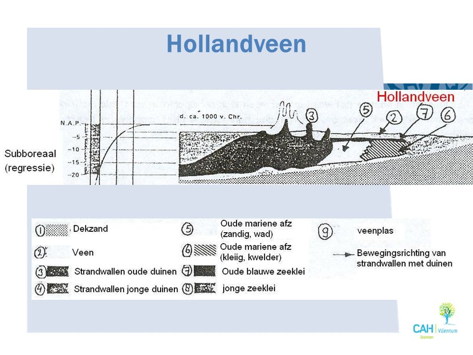 Hollandveen