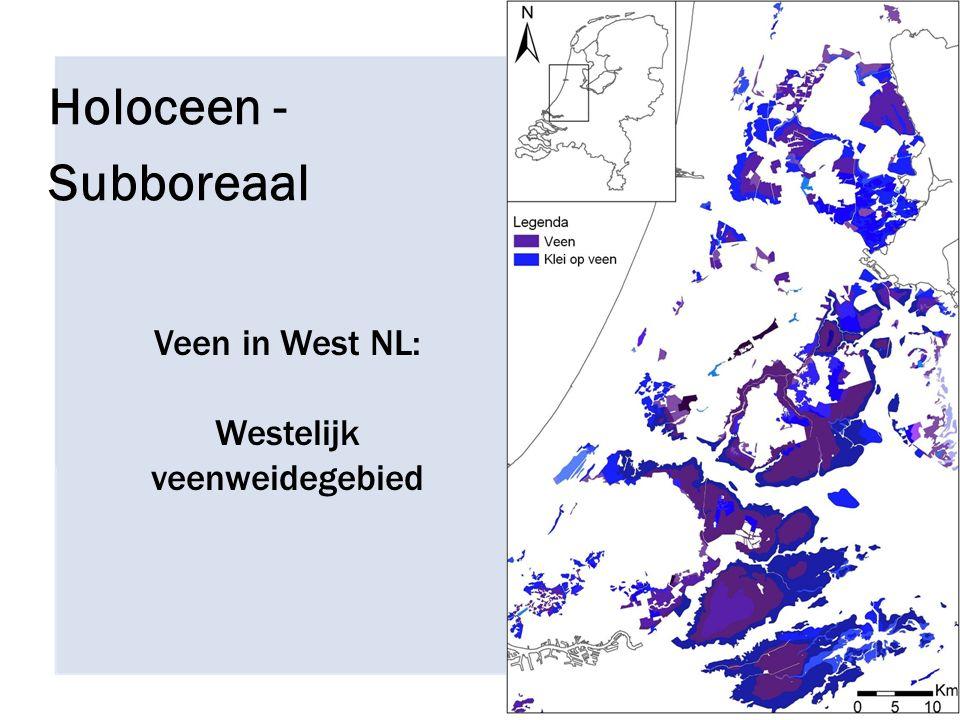 Veen in West NL: Westelijk veenweidegebied