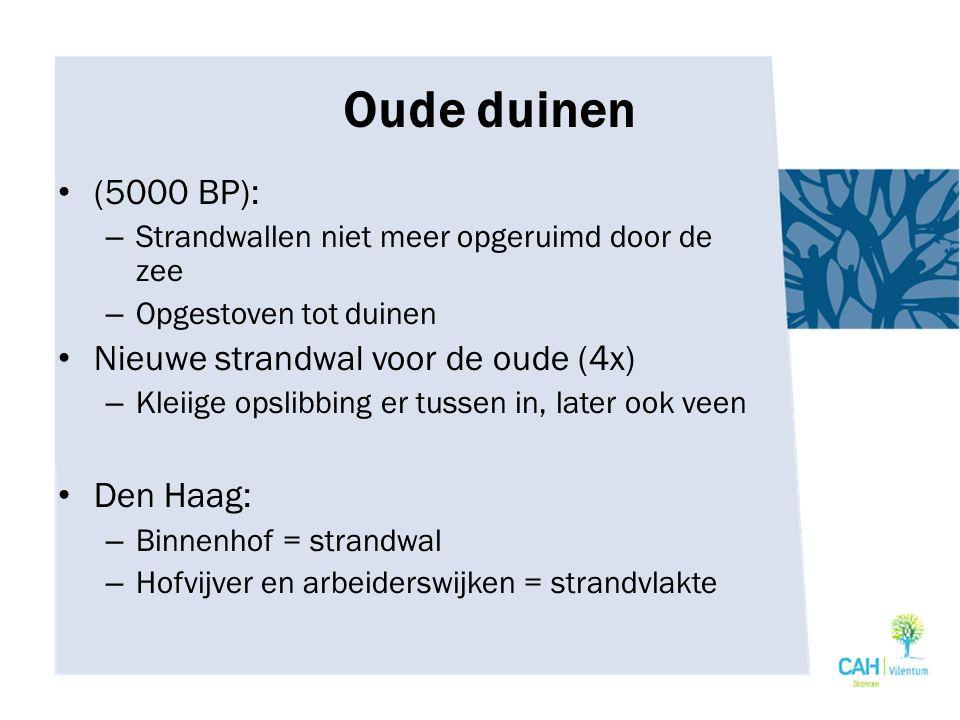 Oude duinen (5000 BP): Nieuwe strandwal voor de oude (4x) Den Haag: