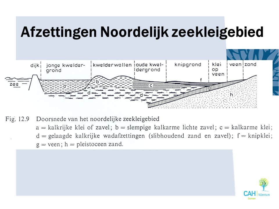 Afzettingen Noordelijk zeekleigebied