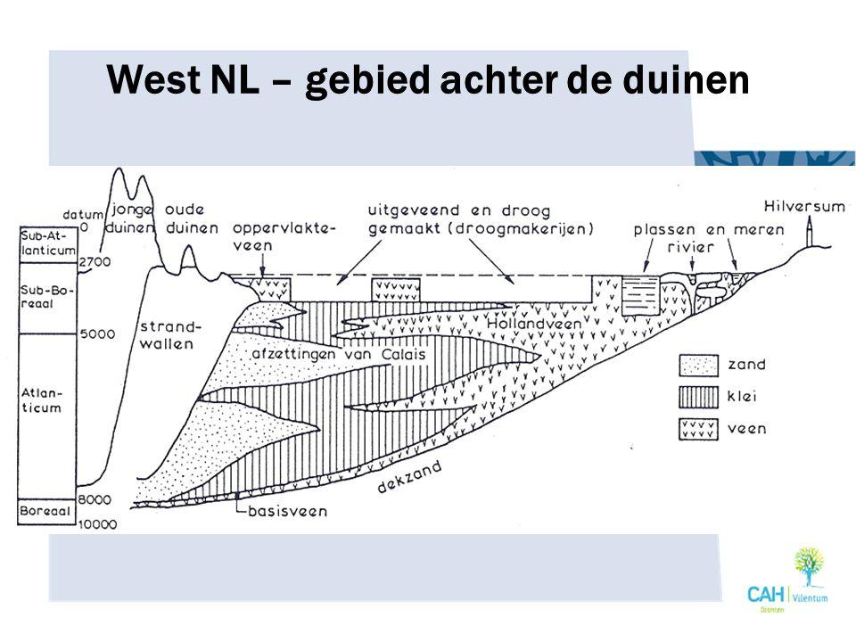 West NL – gebied achter de duinen