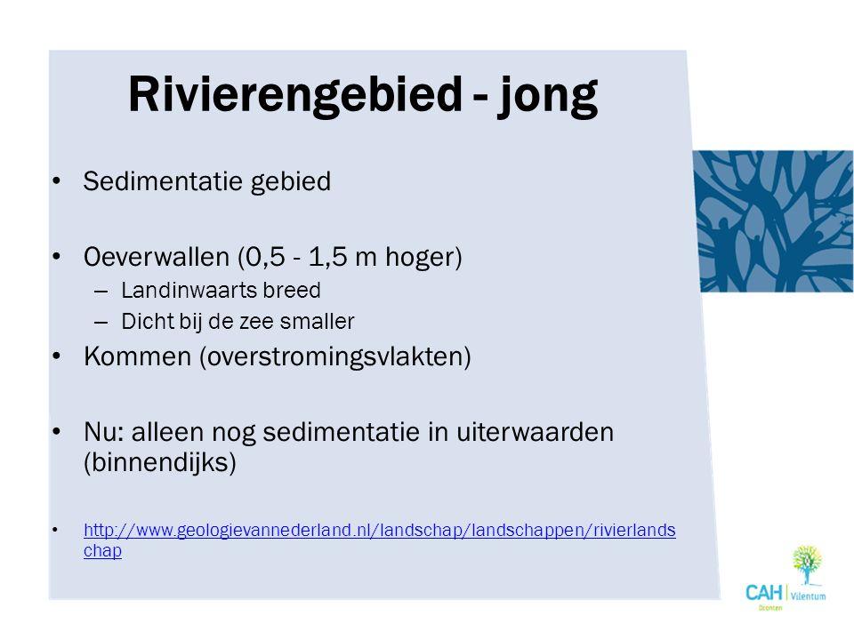 Rivierengebied - jong Sedimentatie gebied