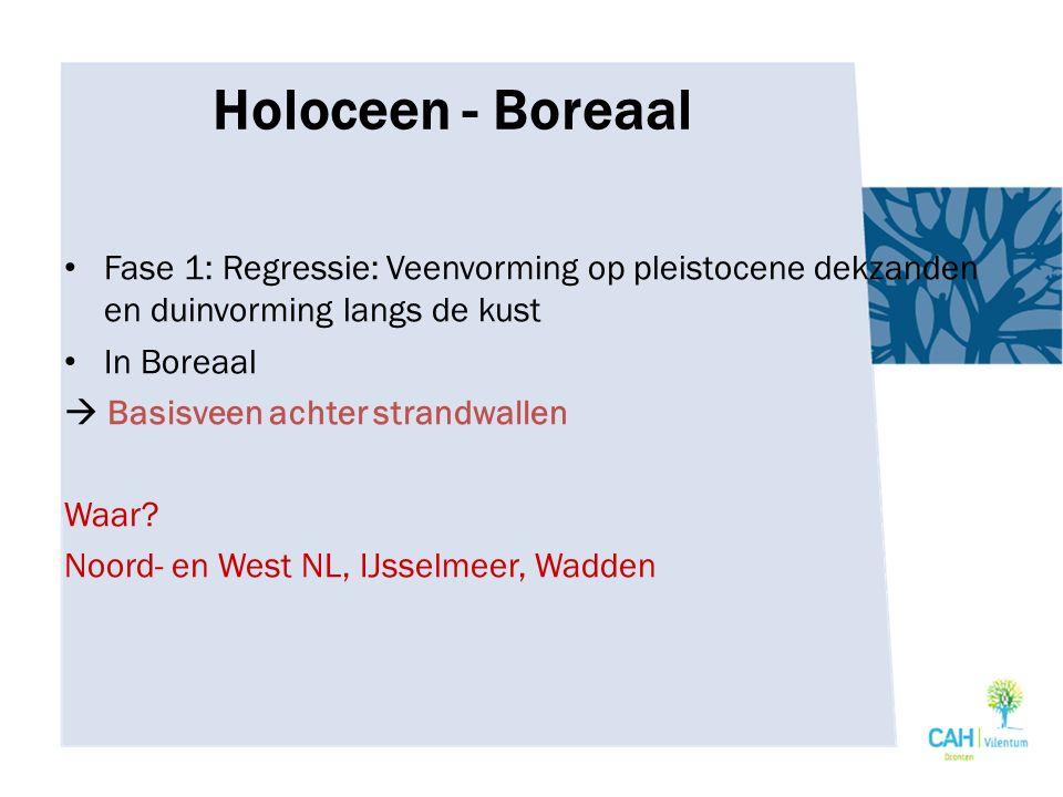Holoceen - Boreaal Fase 1: Regressie: Veenvorming op pleistocene dekzanden en duinvorming langs de kust.