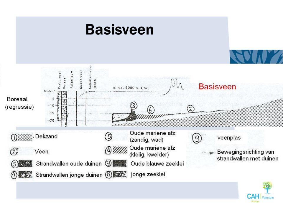Basisveen