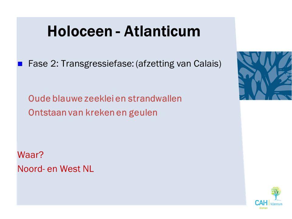 Holoceen - Atlanticum Fase 2: Transgressiefase: (afzetting van Calais)