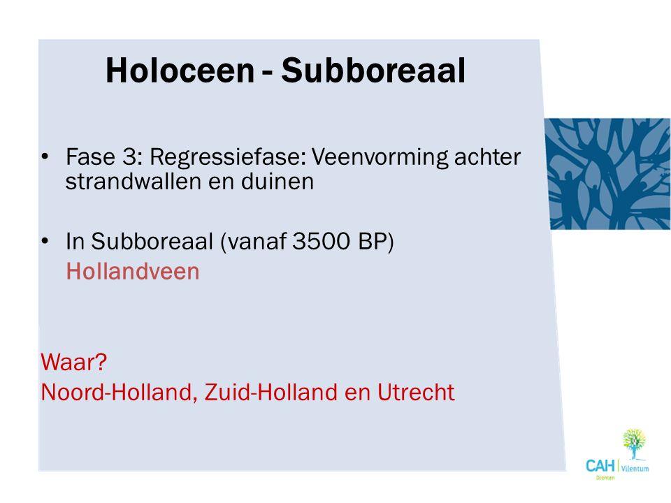 Holoceen - Subboreaal Fase 3: Regressiefase: Veenvorming achter strandwallen en duinen. In Subboreaal (vanaf 3500 BP)