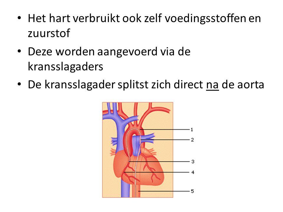 Het hart verbruikt ook zelf voedingsstoffen en zuurstof
