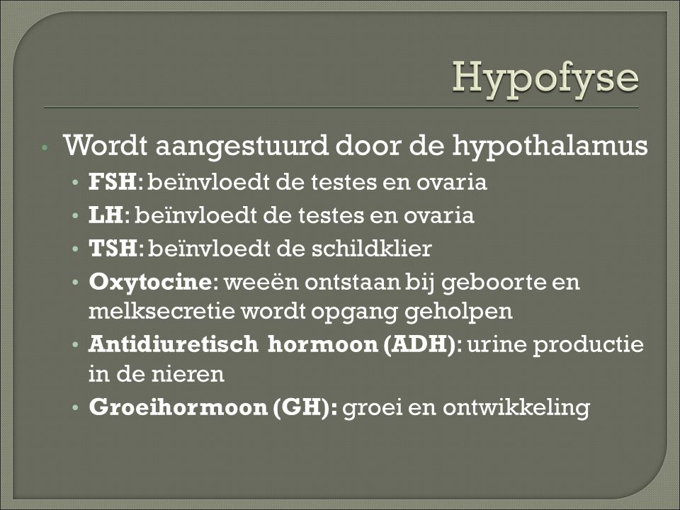 Hypofyse Wordt aangestuurd door de hypothalamus