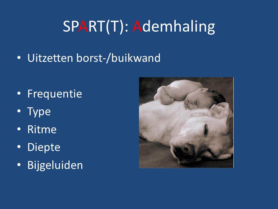 SPART(T): Ademhaling Uitzetten borst-/buikwand Frequentie Type Ritme