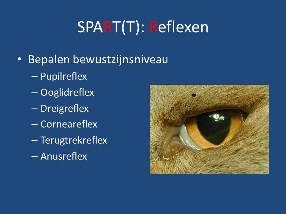 SPART(T): Reflexen Bepalen bewustzijnsniveau Pupilreflex Ooglidreflex