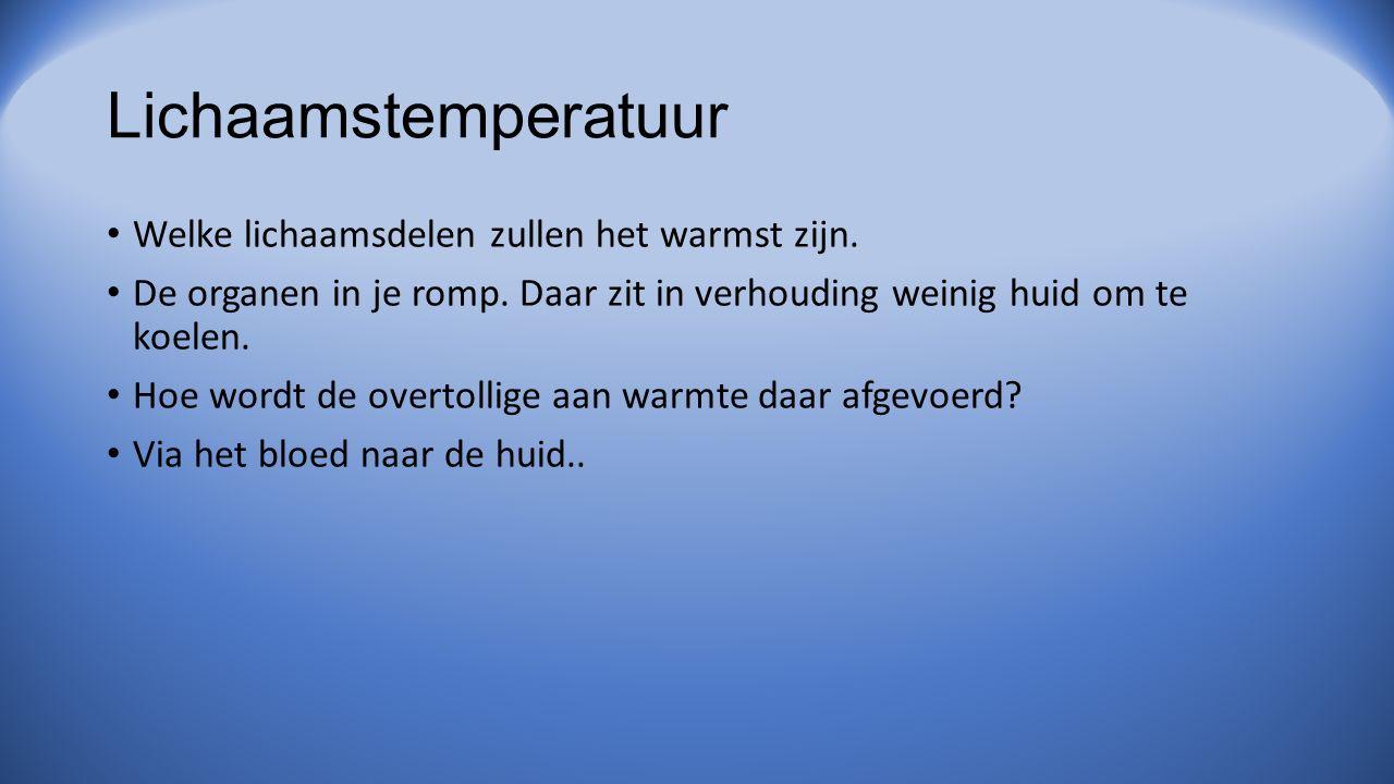 Lichaamstemperatuur Welke lichaamsdelen zullen het warmst zijn.