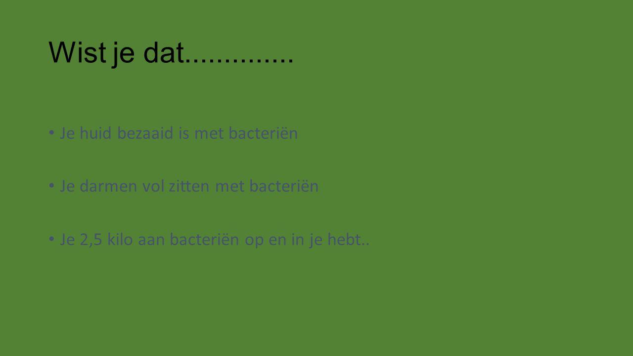 Wist je dat.............. Je huid bezaaid is met bacteriën