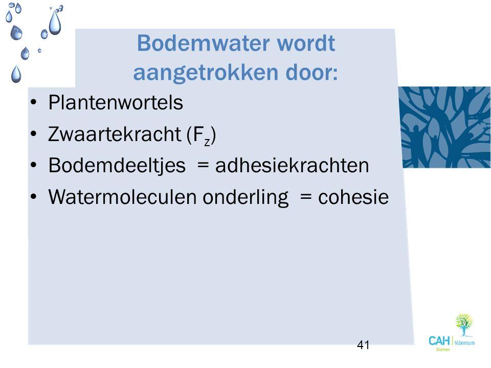 Bodemwater wordt aangetrokken door: