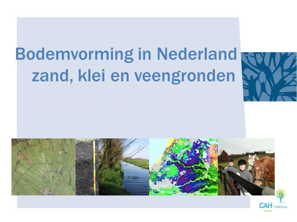 Bodemvorming in Nederland – zand, klei en veengronden