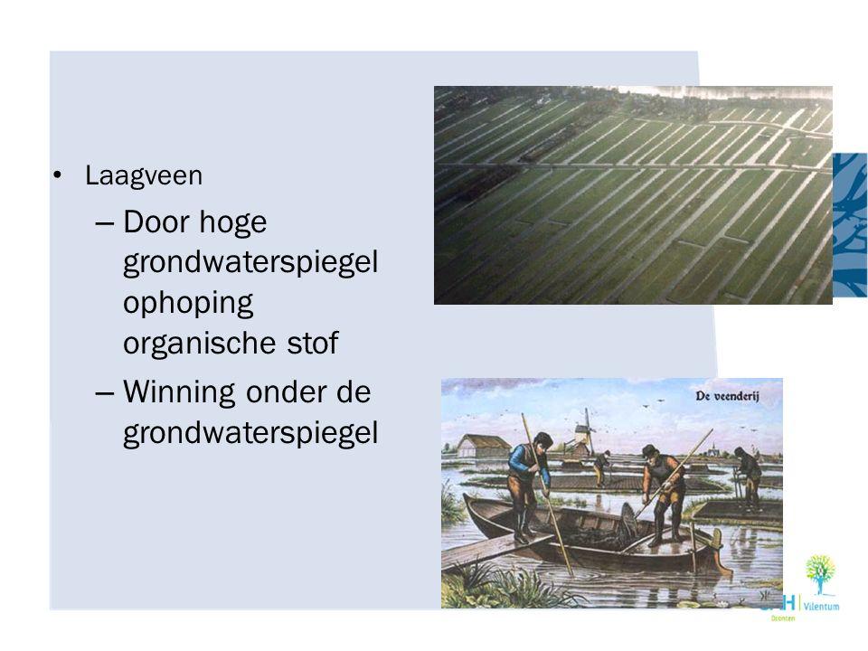Door hoge grondwaterspiegel ophoping organische stof