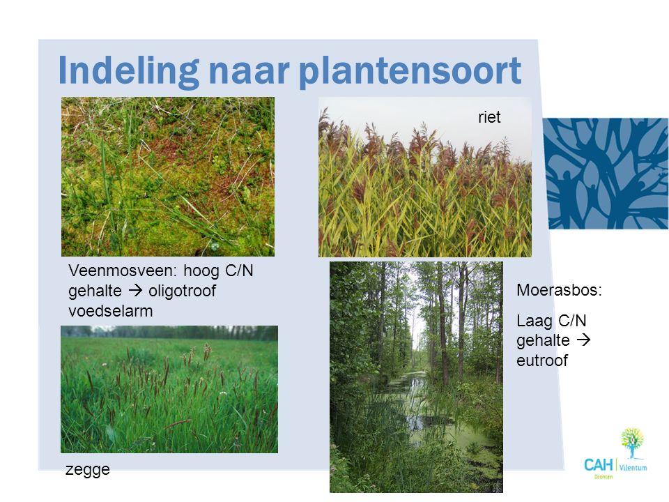 Indeling naar plantensoort
