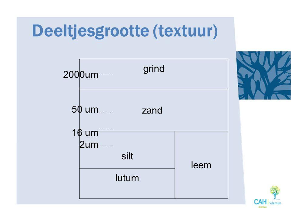 Deeltjesgrootte (textuur)