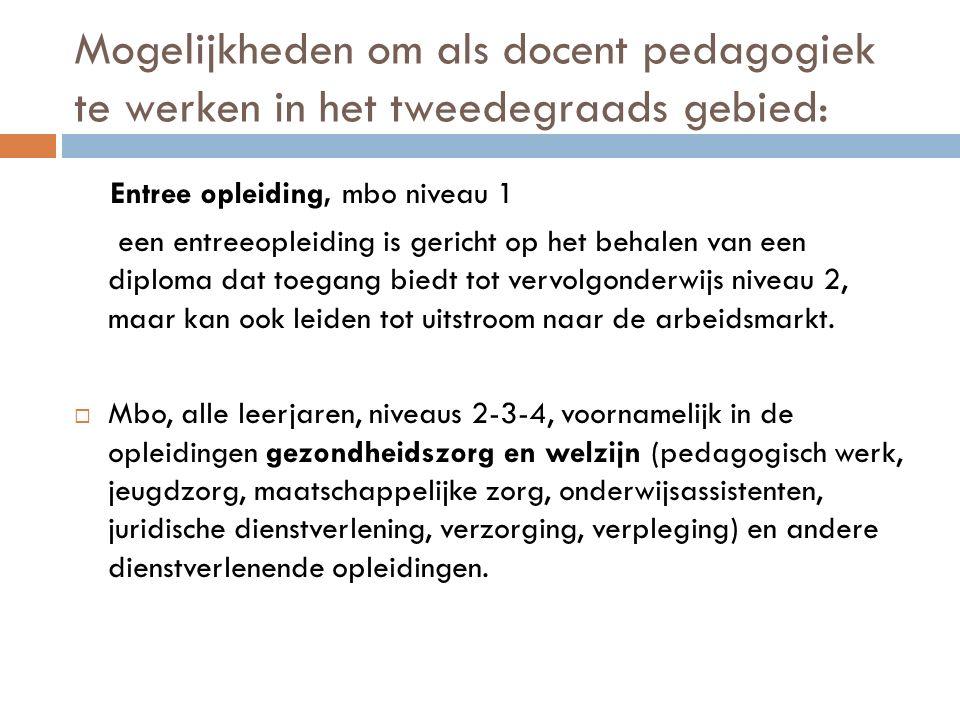 Mogelijkheden om als docent pedagogiek te werken in het tweedegraads gebied: