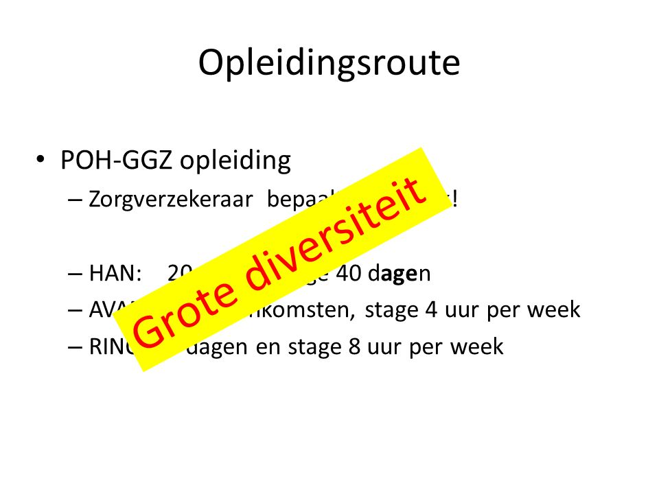 Grote diversiteit Opleidingsroute POH-GGZ opleiding